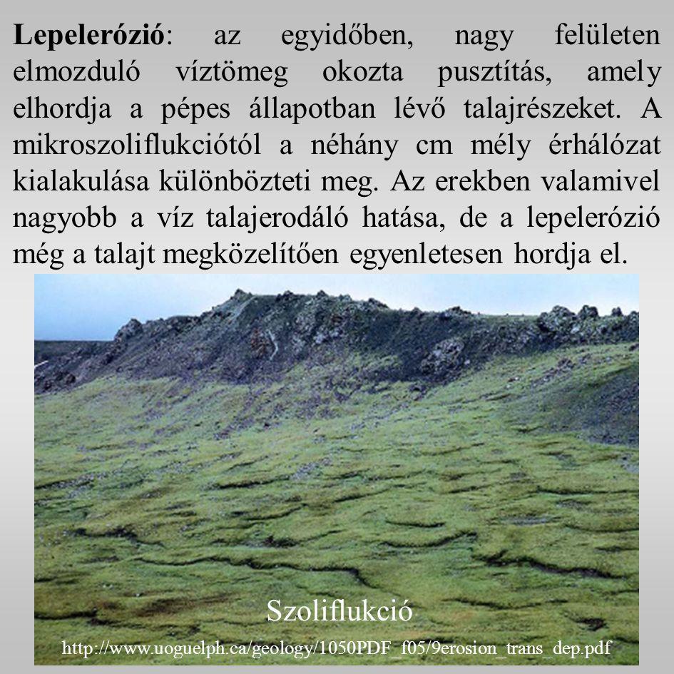 Lepelerózió: az egyidőben, nagy felületen elmozduló víztömeg okozta pusztítás, amely elhordja a pépes állapotban lévő talajrészeket.