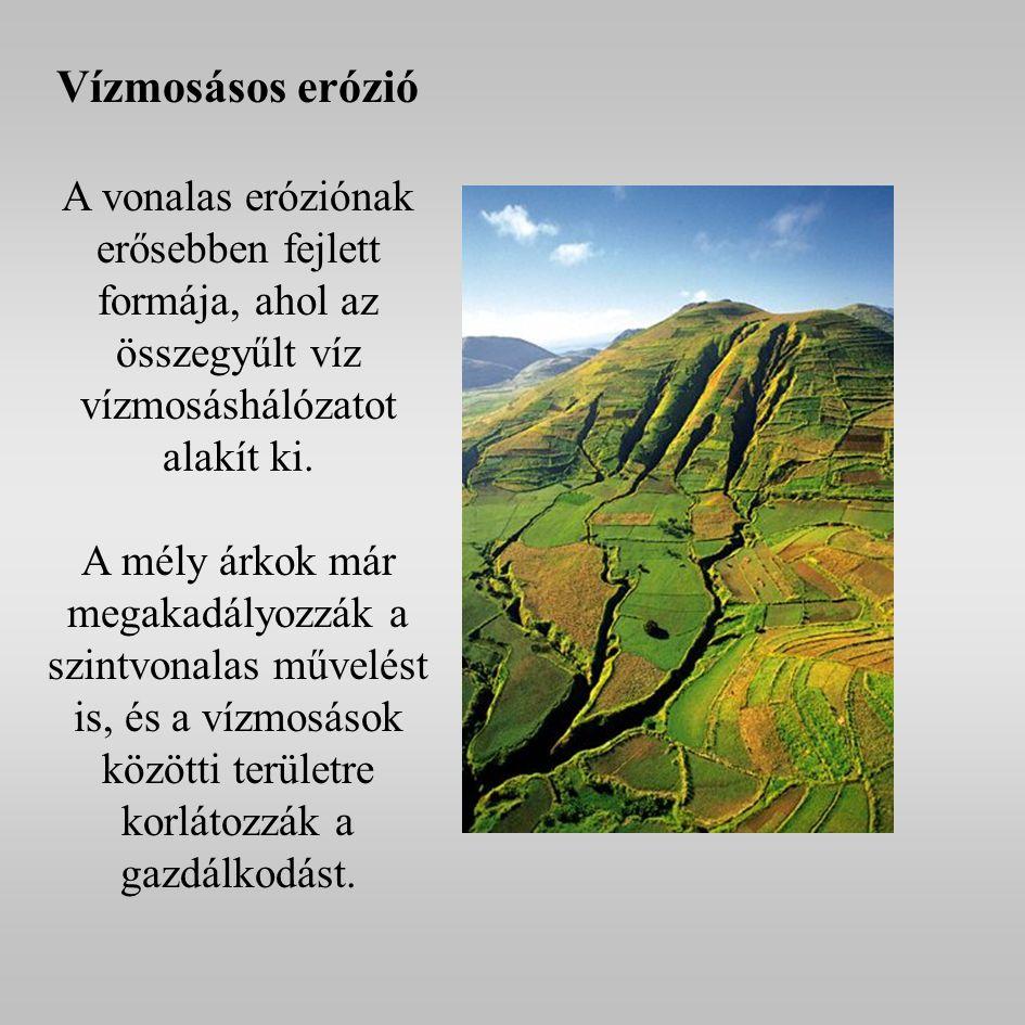 Vízmosásos erózió A vonalas eróziónak erősebben fejlett formája, ahol az összegyűlt víz vízmosáshálózatot alakít ki.