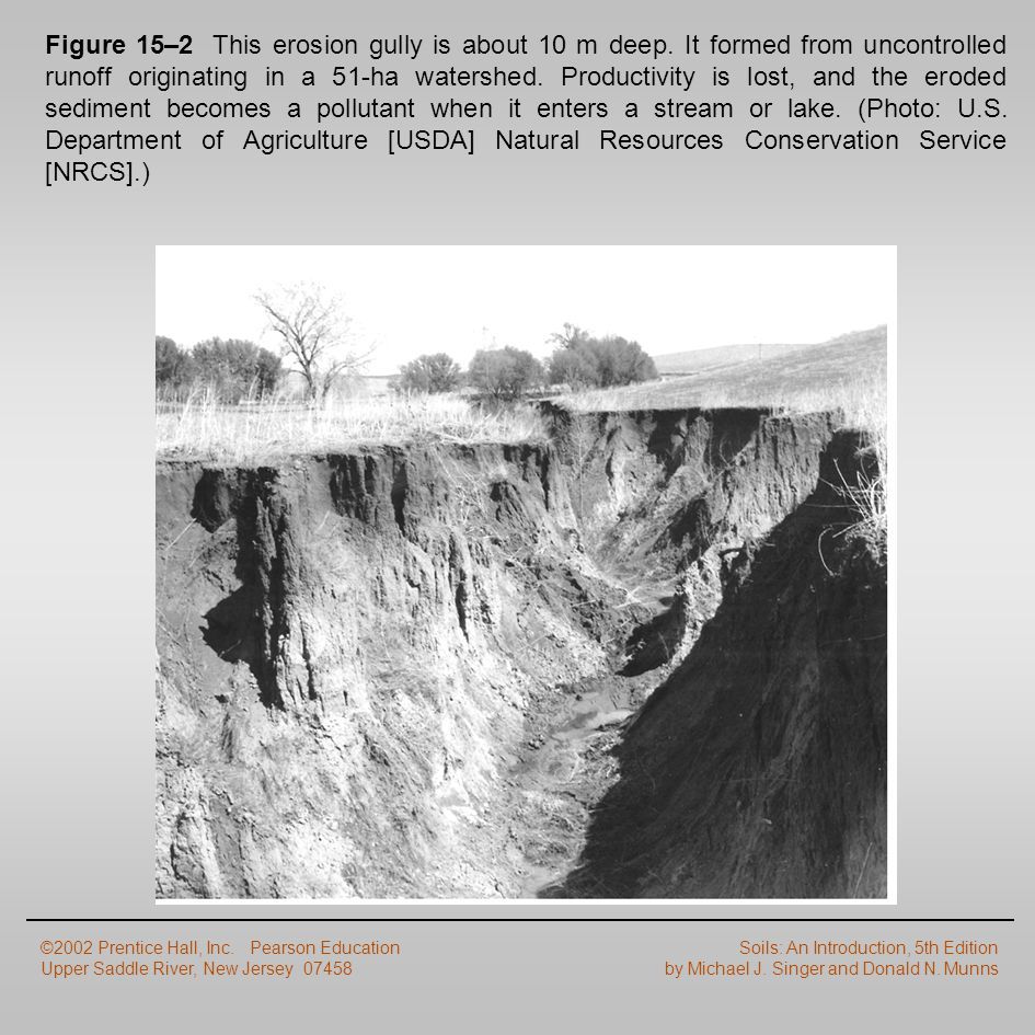 Figure 15–2 This erosion gully is about 10 m deep. It formed from uncontrolled runoff originating in a 51-ha watershed. Productivity is lost, and the
