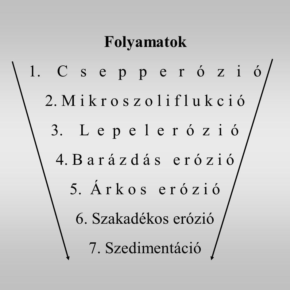 Folyamatok 1.C s e p p e r ó z i ó 2. M i k r o s z o l i f l u k c i ó 3.
