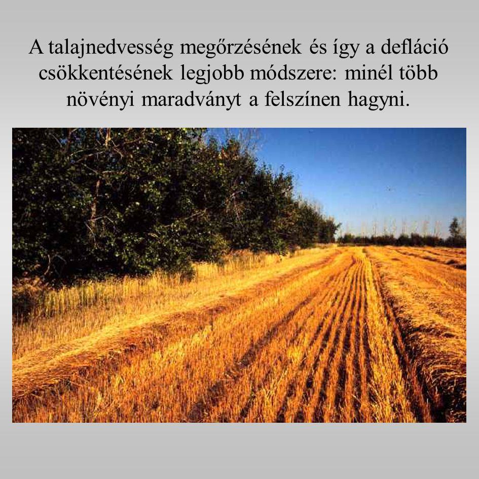 A talajnedvesség megőrzésének és így a defláció csökkentésének legjobb módszere: minél több növényi maradványt a felszínen hagyni.