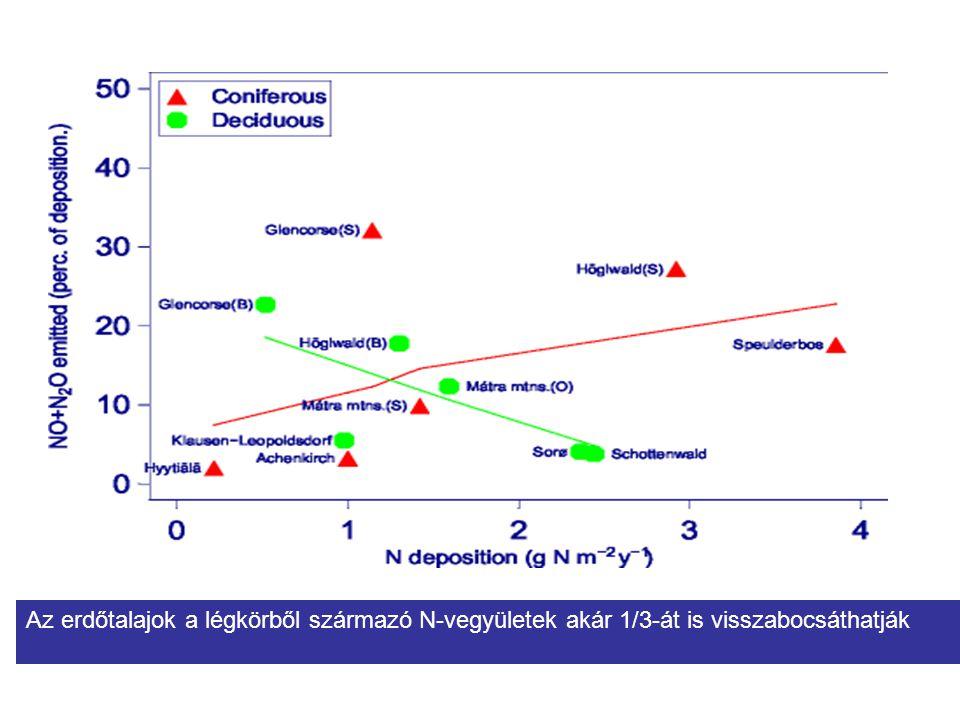 Az erdőtalajok a légkörből származó N-vegyületek akár 1/3-át is visszabocsáthatják