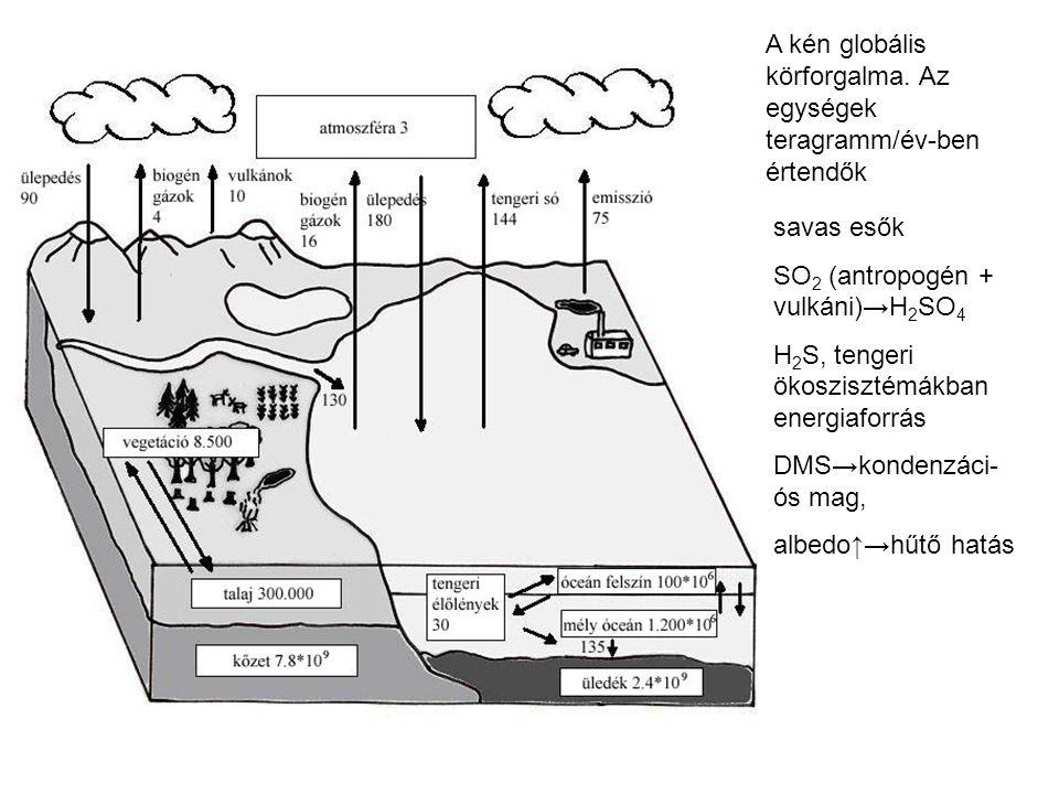 A kén globális körforgalma. Az egységek teragramm/év-ben értendők savas esők SO 2 (antropogén + vulkáni)→H 2 SO 4 H 2 S, tengeri ökoszisztémákban ener
