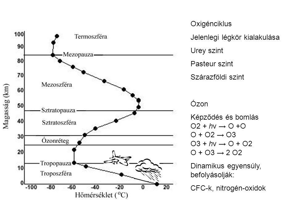 Oxigénciklus Jelenlegi légkör kialakulása Urey szint Pasteur szint Szárazföldi szint Ózon Képződés és bomlás O2 + hν → O +O O + O2 → O3 O3 + hν → O +