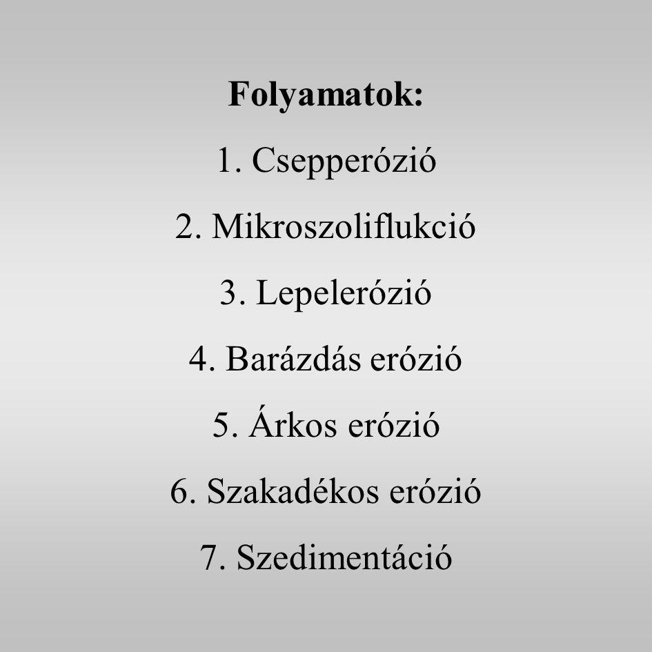 Folyamatok: 1. Csepperózió 2. Mikroszoliflukció 3.