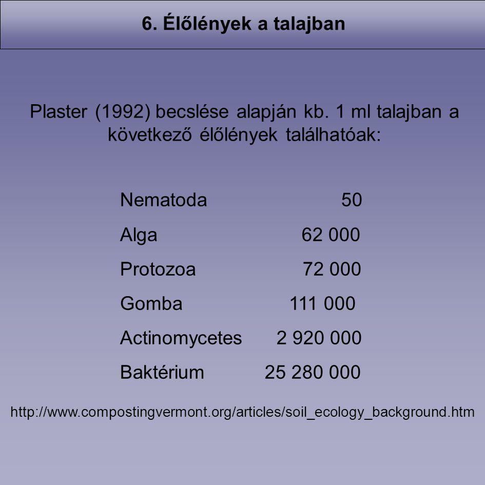 Nematoda 50 Alga 62 000 Protozoa 72 000 Gomba 111 000 Actinomycetes 2 920 000 Baktérium 25 280 000 Plaster (1992) becslése alapján kb. 1 ml talajban a
