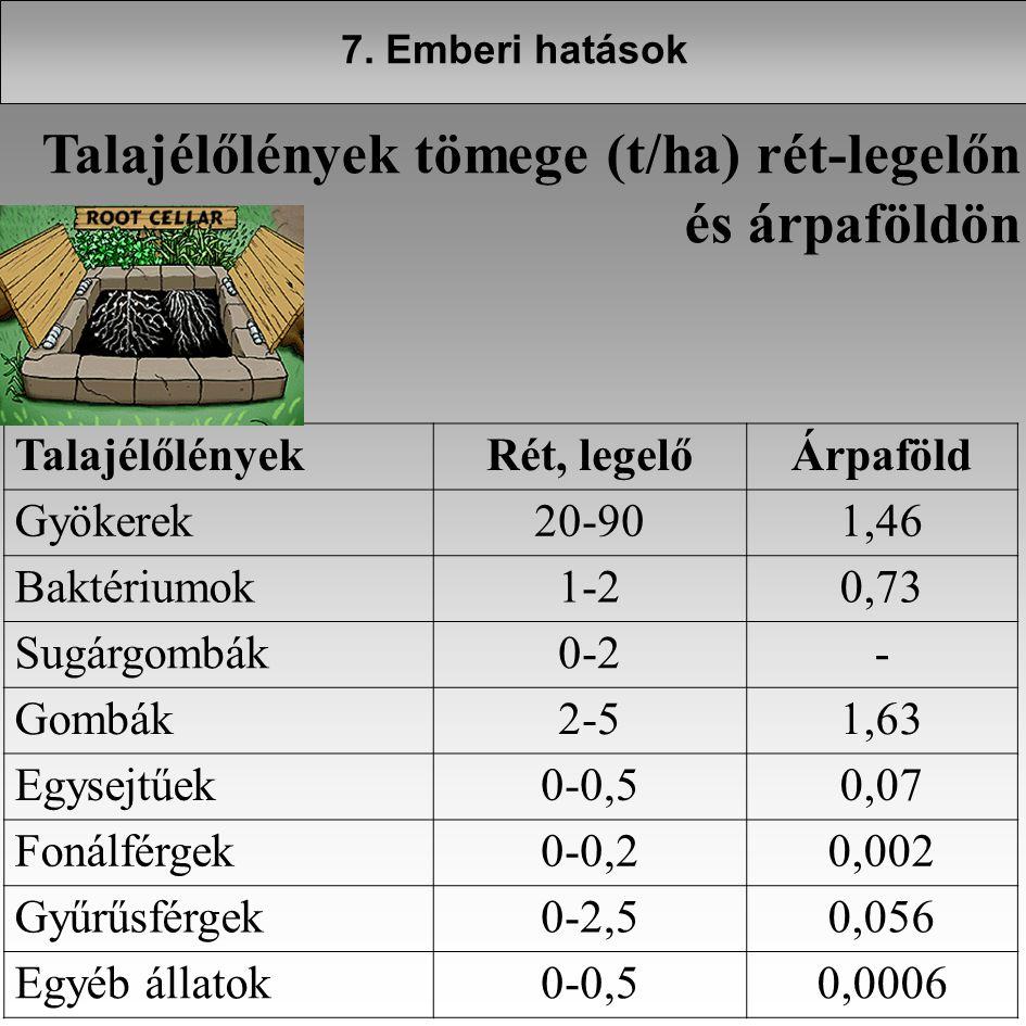 TalajélőlényekRét, legelőÁrpaföld Gyökerek20-901,46 Baktériumok1-20,73 Sugárgombák0-2- Gombák2-51,63 Egysejtűek0-0,50,07 Fonálférgek0-0,20,002 Gyűrűsf