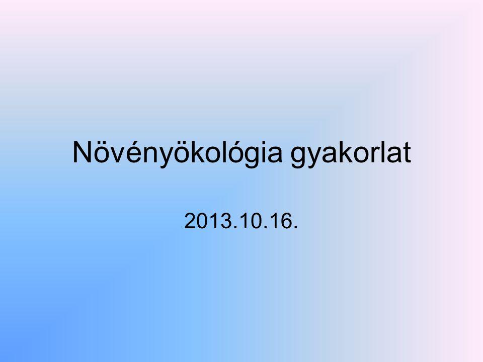 Növényökológia gyakorlat 2013.10.16.