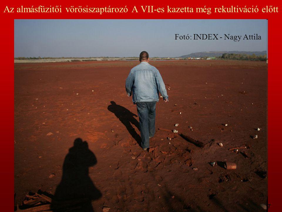 9:37 Az almásfüzitői vörösiszaptározó A VII-es kazetta még rekultiváció előtt Fotó: INDEX - Nagy Attila