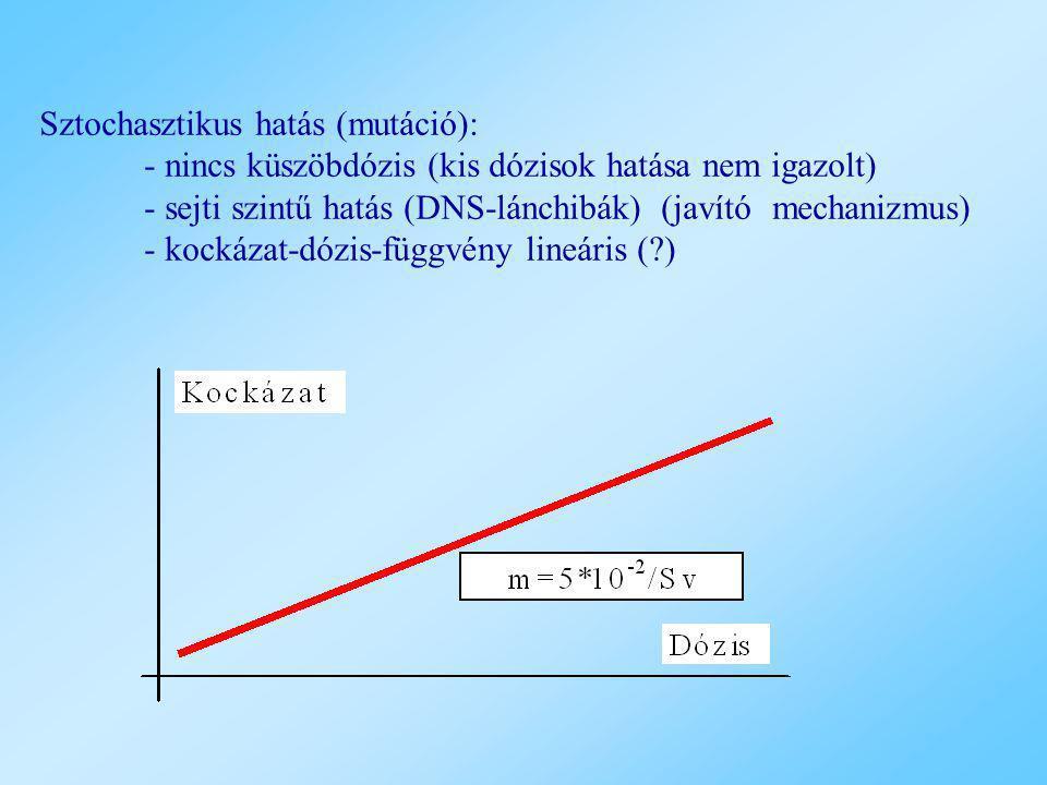 Sztochasztikus hatás (mutáció): - nincs küszöbdózis (kis dózisok hatása nem igazolt) - sejti szintű hatás (DNS-lánchibák) (javító mechanizmus) - kocká