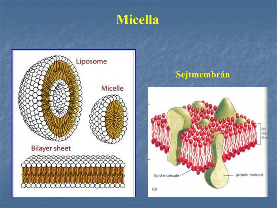 CMC Kritikus Micella Koncentráció Egyensúlyi folyamat CMC feletti koncentrációnál nem nő az aktív molekulák koncentrációja