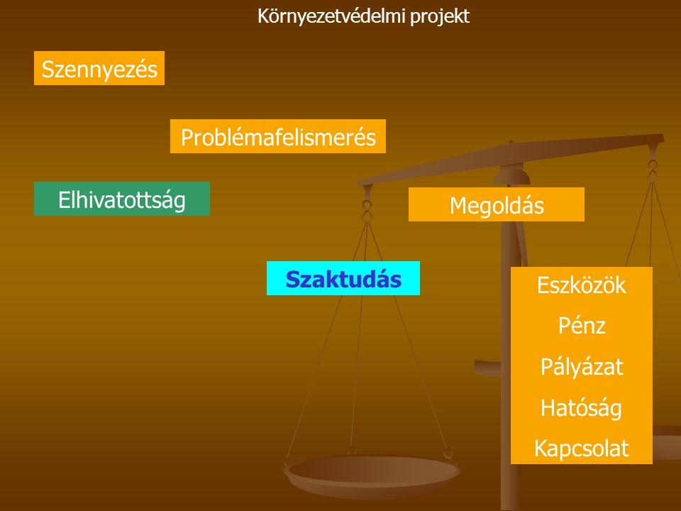 Szennyezés Problémafelismerés Megoldás Szaktudás Eszközök Pénz Pályázat Hatóság Kapcsolat Környezetvédelmi projekt Elhivatottság