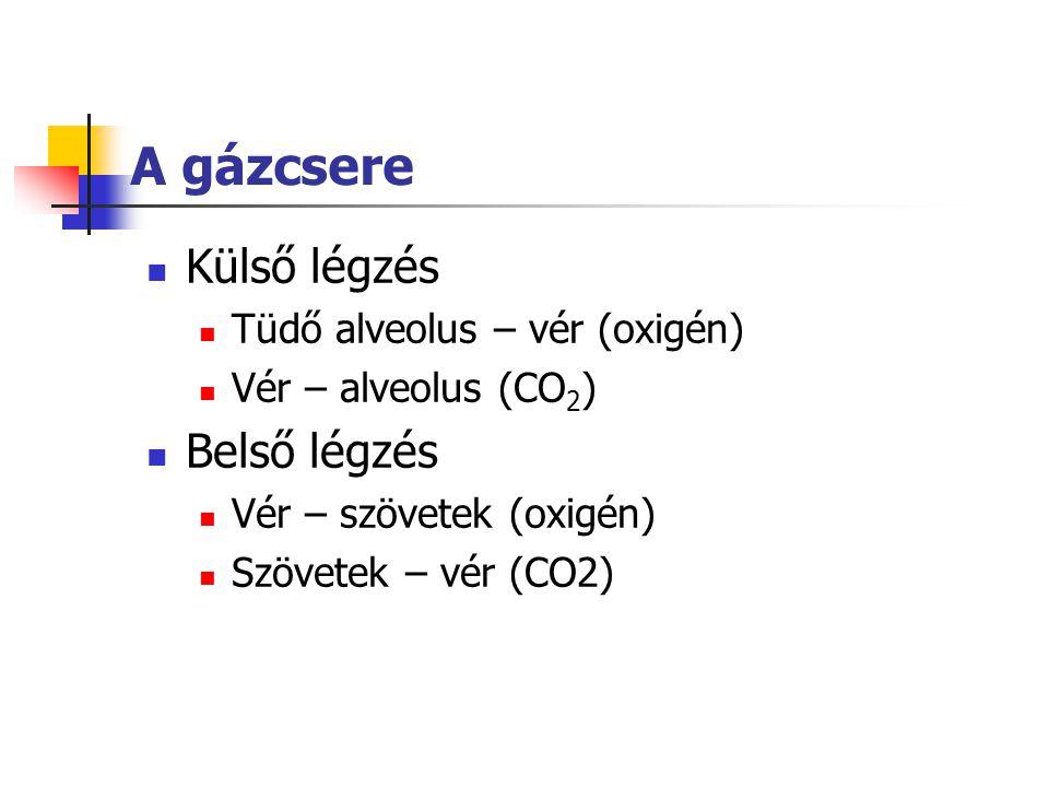 A gázcsere Külső légzés Tüdő alveolus – vér (oxigén) Vér – alveolus (CO 2 ) Belső légzés Vér – szövetek (oxigén) Szövetek – vér (CO2)