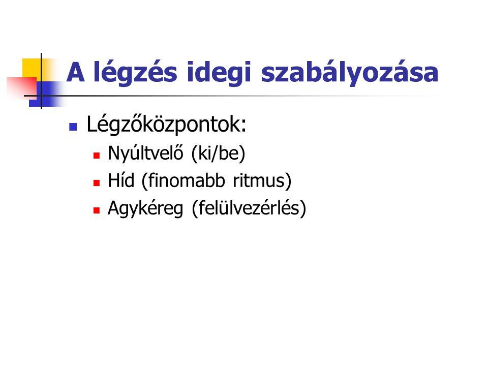 A légzés idegi szabályozása Légzőközpontok: Nyúltvelő (ki/be) Híd (finomabb ritmus) Agykéreg (felülvezérlés)