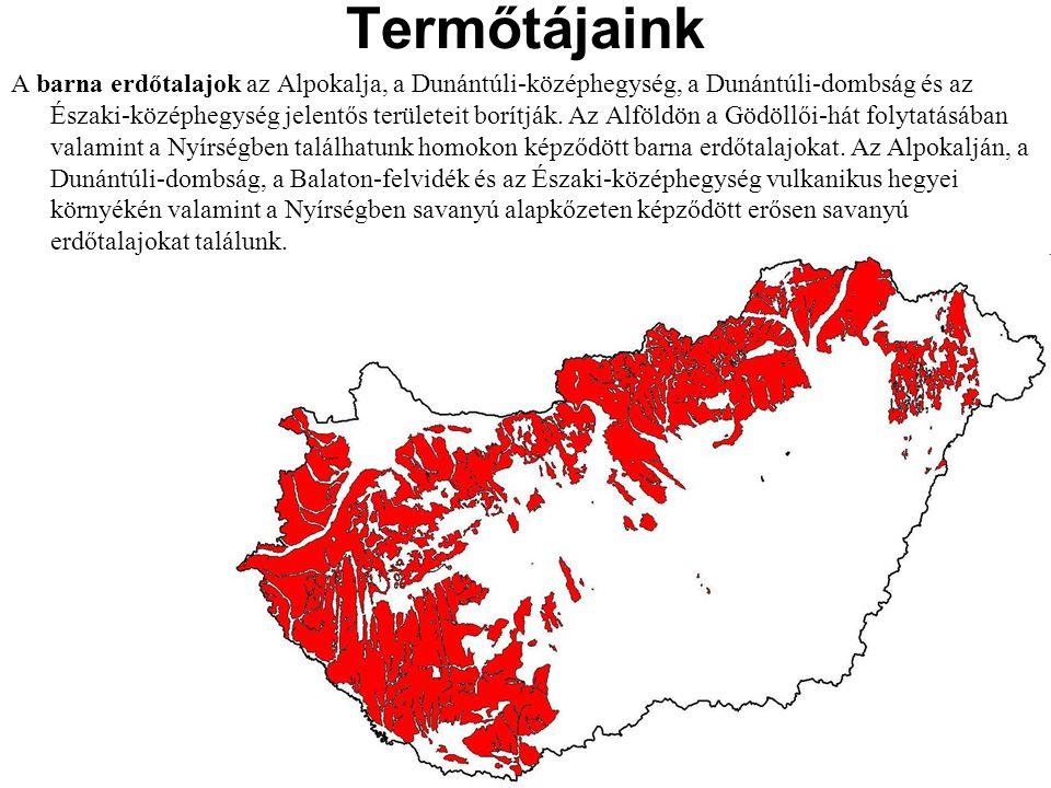 A barna erdőtalajok az Alpokalja, a Dunántúli-középhegység, a Dunántúli-dombság és az Északi-középhegység jelentős területeit borítják. Az Alföldön a