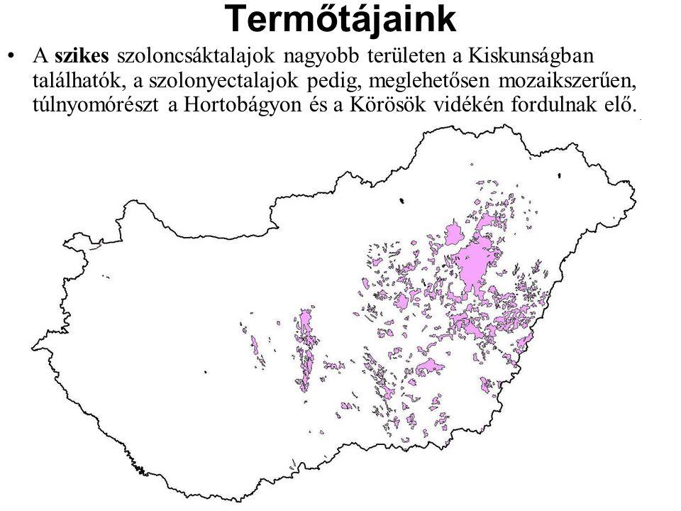 A szikes szoloncsáktalajok nagyobb területen a Kiskunságban találhatók, a szolonyectalajok pedig, meglehetősen mozaikszerűen, túlnyomórészt a Hortobág
