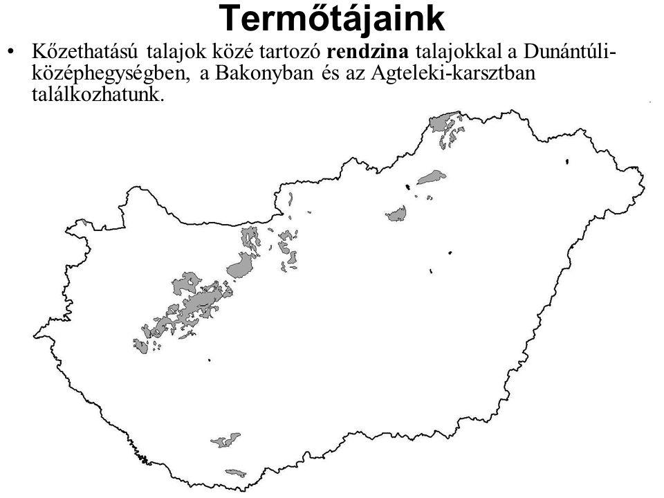 Kőzethatású talajok közé tartozó rendzina talajokkal a Dunántúli- középhegységben, a Bakonyban és az Agteleki-karsztban találkozhatunk. Termőtájaink