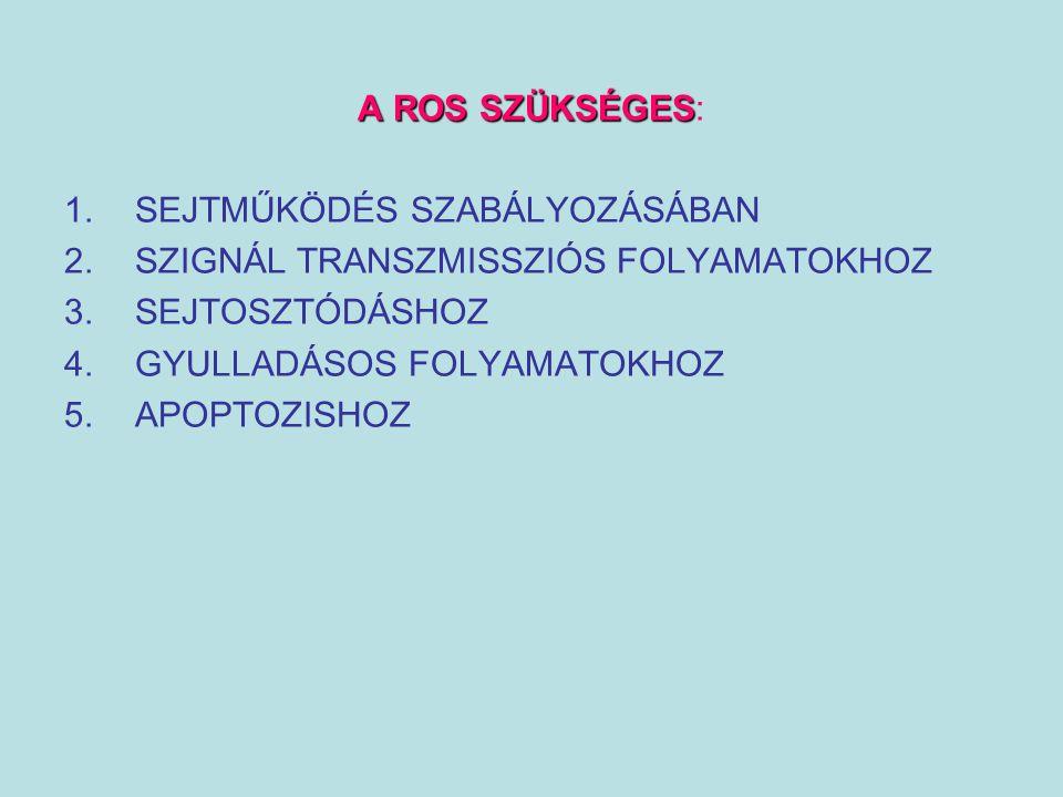 A ROS SZÜKSÉGES A ROS SZÜKSÉGES: 1.SEJTMŰKÖDÉS SZABÁLYOZÁSÁBAN 2.SZIGNÁL TRANSZMISSZIÓS FOLYAMATOKHOZ 3.SEJTOSZTÓDÁSHOZ 4.GYULLADÁSOS FOLYAMATOKHOZ 5.