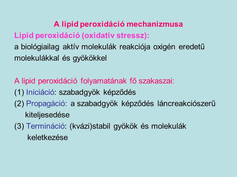 A lipid peroxidáció mechanizmusa Lipid peroxidáció (oxidativ stressz): a biológiailag aktív molekulák reakciója oxigén eredetű molekulákkal és gyökökk