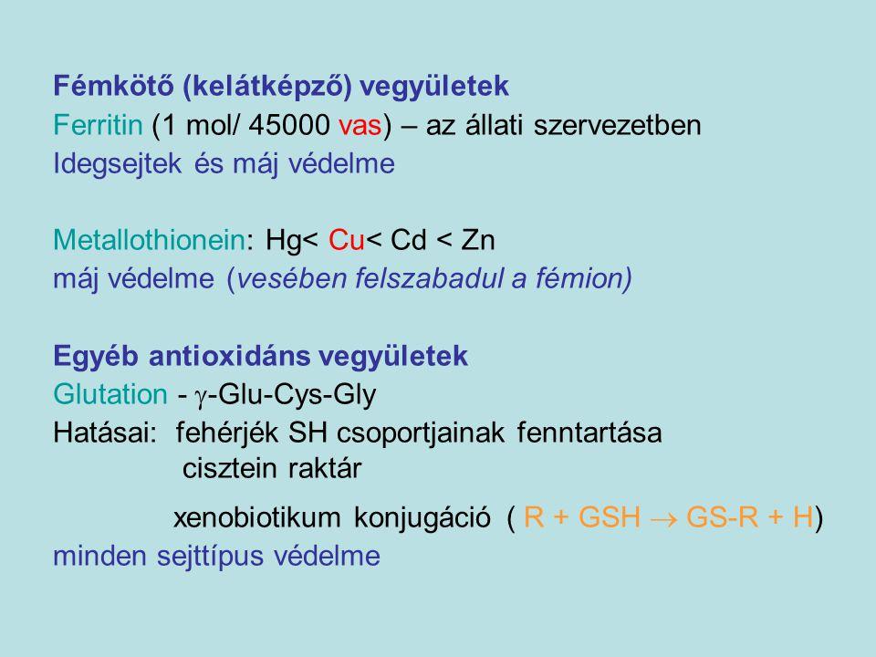 Fémkötő (kelátképző) vegyületek Ferritin (1 mol/ 45000 vas) – az állati szervezetben Idegsejtek és máj védelme Metallothionein: Hg< Cu< Cd < Zn máj vé