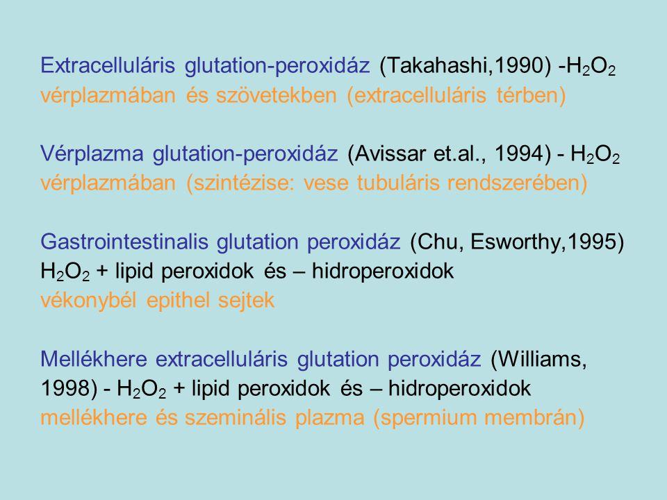 Extracelluláris glutation-peroxidáz (Takahashi,1990) -H 2 O 2 vérplazmában és szövetekben (extracelluláris térben) Vérplazma glutation-peroxidáz (Avis