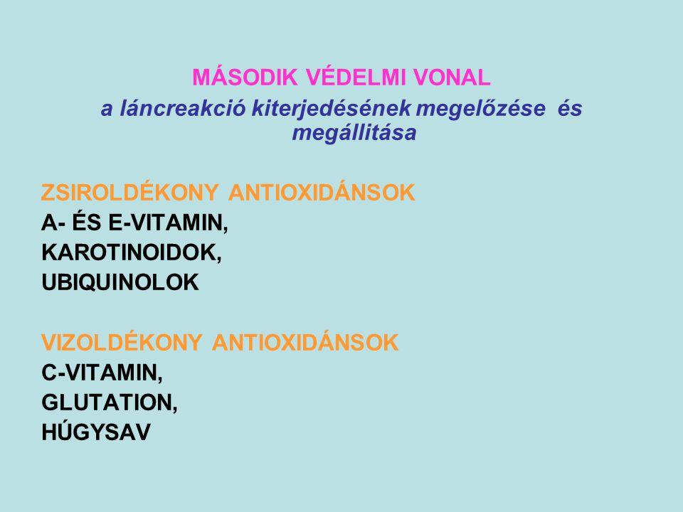 MÁSODIK VÉDELMI VONAL a láncreakció kiterjedésének megelőzése és megállitása ZSIROLDÉKONY ANTIOXIDÁNSOK A- ÉS E-VITAMIN, KAROTINOIDOK, UBIQUINOLOK VIZ