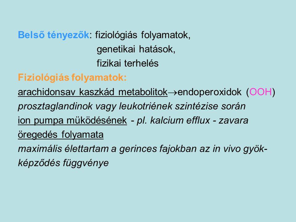 Belső tényezők: fiziológiás folyamatok, genetikai hatások, fizikai terhelés Fiziológiás folyamatok: arachidonsav kaszkád metabolitok  endoperoxidok (