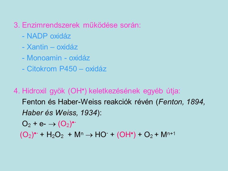 3. Enzimrendszerek működése során: - NADP oxidáz - Xantin – oxidáz - Monoamin - oxidáz - Citokrom P450 – oxidáz 4. Hidroxil gyök (OH  ) keletkezéséne