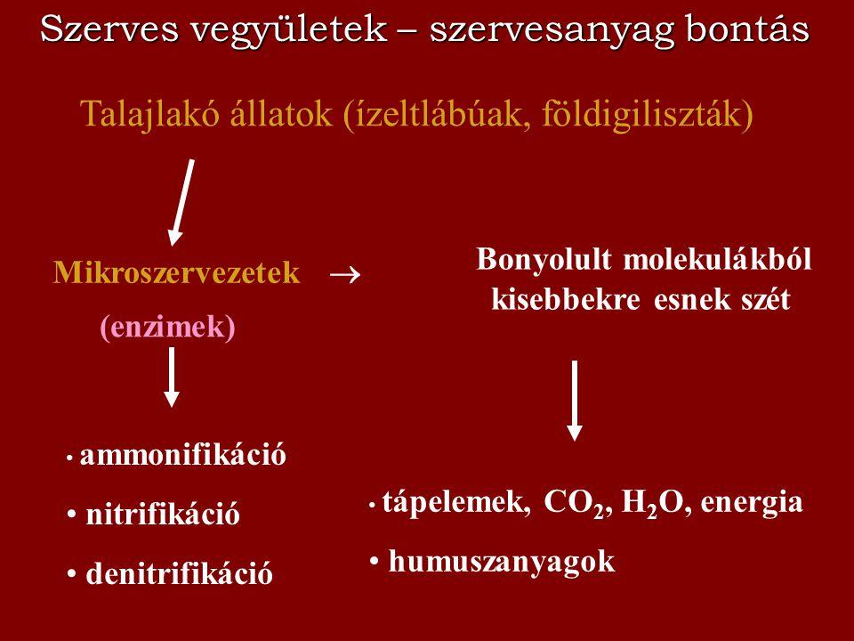 Szerves vegyületek – szervesanyag bontás Mikroszervezetek  Talajlakó állatok (ízeltlábúak, földigiliszták) (enzimek) Bonyolult molekulákból kisebbekr