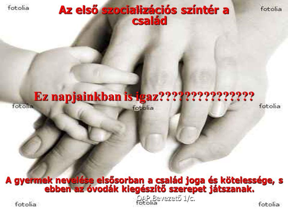 2 Az első szocializációs színtér a család Ez napjainkban is igaz??????????????? A gyermek nevelése elsősorban a család joga és kötelessége, s ebben az