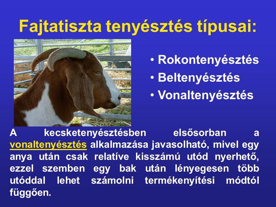 Fajtatiszta tenyésztés típusai: A kecsketenyésztésben elsősorban a vonaltenyésztés alkalmazása javasolható, mivel egy anya után csak relatíve kisszámú