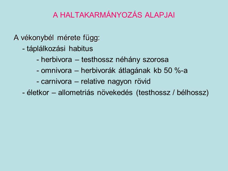 A HALTAKARMÁNYOZÁS ALAPJAI A vékonybél mérete függ: - táplálkozási habitus - herbivora – testhossz néhány szorosa - omnivora – herbivorák átlagának kb