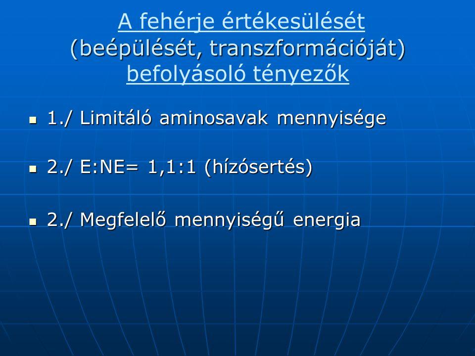 (beépülését, transzformációját) A fehérje értékesülését (beépülését, transzformációját) befolyásoló tényezők 1./ Limitáló aminosavak mennyisége 1./ Li