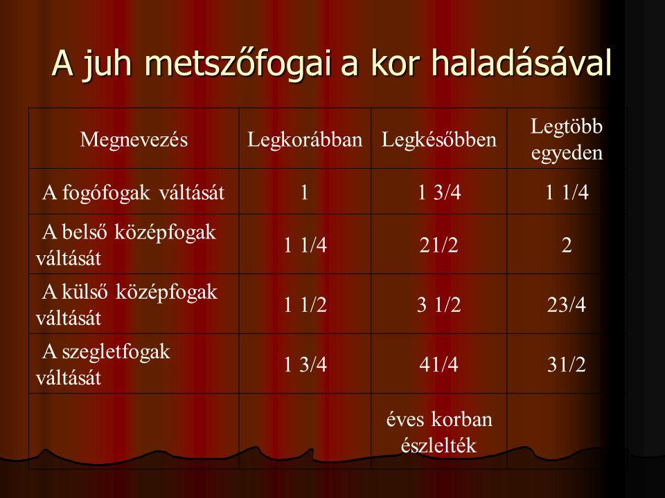 A juh metszőfogai a kor haladásával MegnevezésLegkorábbanLegkésőbben Legtöbb egyeden A fogófogak váltását 11 3/41 1/4 A belső középfogak váltását 1 1/421/22 A külső középfogak váltását 1 1/23 1/223/4 A szegletfogak váltását 1 3/441/431/2 éves korban észlelték