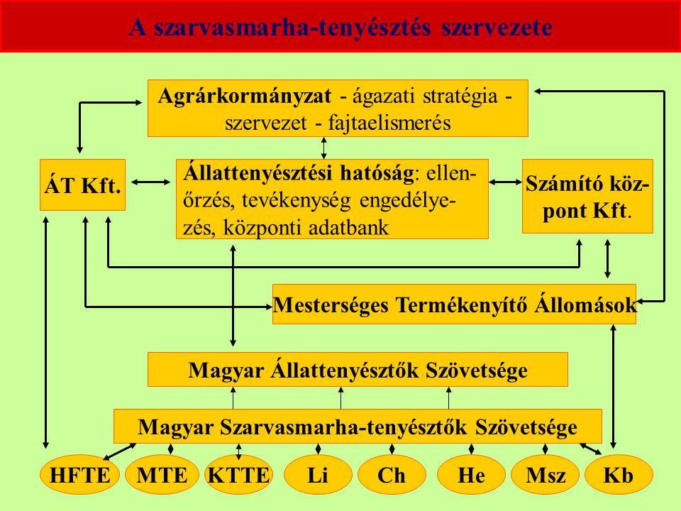 A szarvasmarha-tenyésztés szervezete Agrárkormányzat - ágazati stratégia - szervezet - fajtaelismerés Állattenyésztési hatóság: ellen- őrzés, tevékenység engedélye- zés, központi adatbank ÁT Kft.