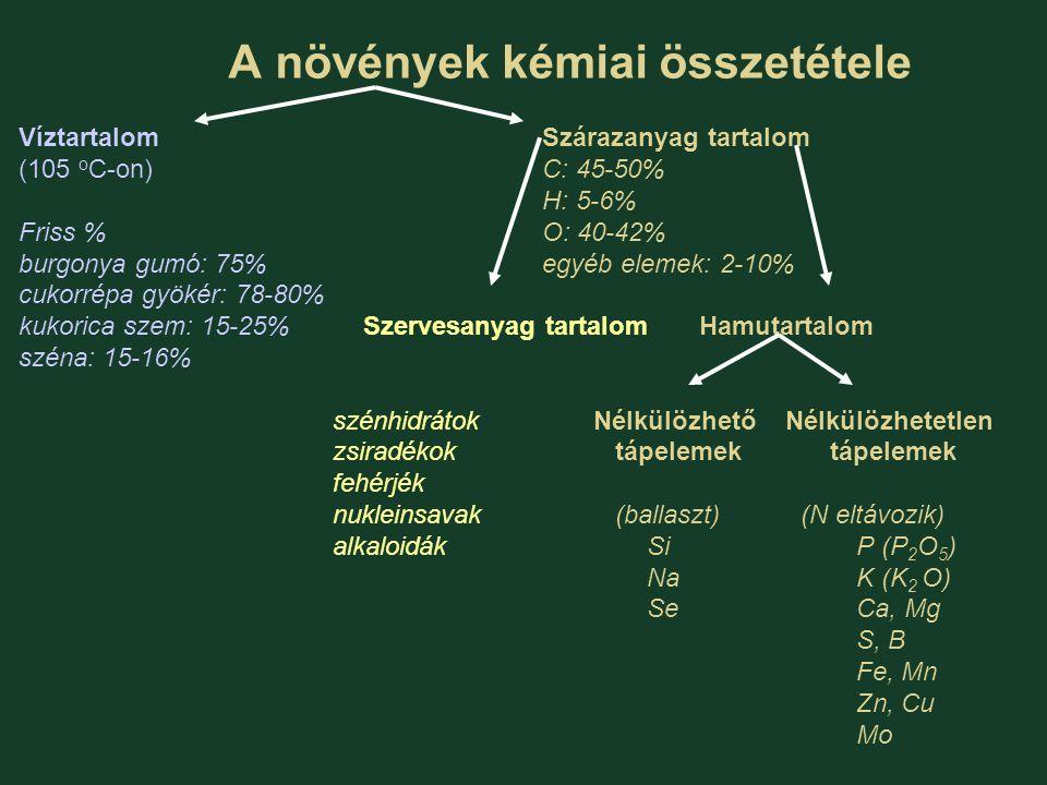 A növények kémiai összetétele VíztartalomSzárazanyag tartalom (105 o C-on)C: 45-50% H: 5-6% Friss %O: 40-42% burgonya gumó: 75%egyéb elemek: 2-10% cuk