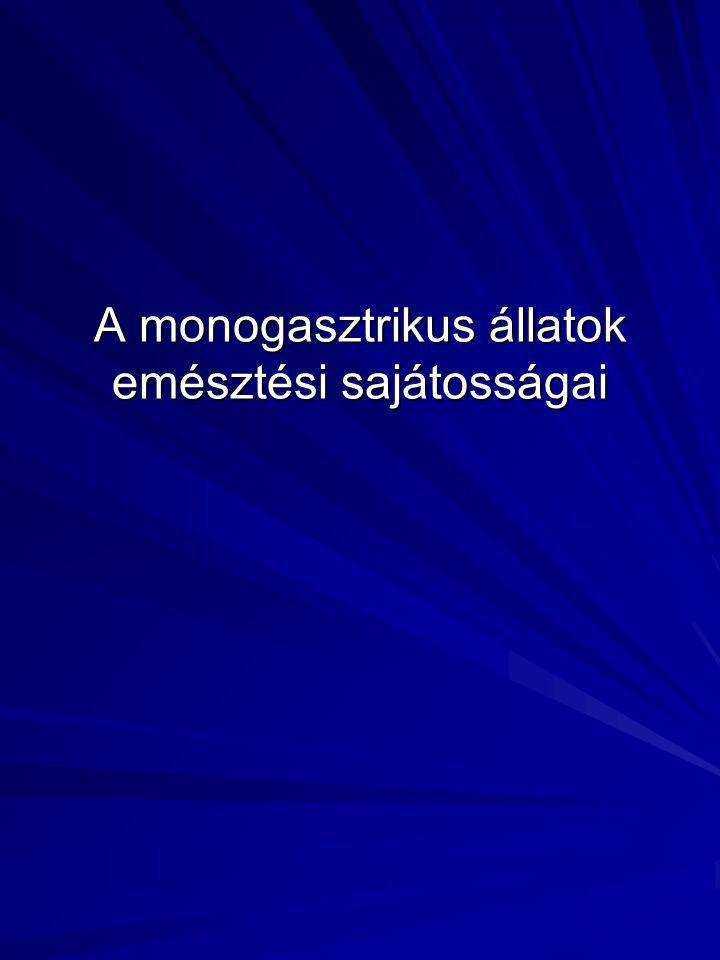 A monogasztrikus állatok emésztési sajátosságai