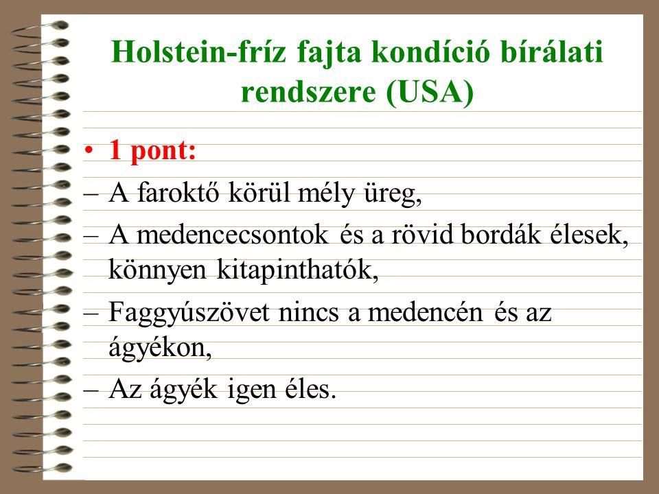 Holstein-fríz fajta kondíció bírálati rendszere (USA) 1 pont: –A faroktő körül mély üreg, –A medencecsontok és a rövid bordák élesek, könnyen kitapint