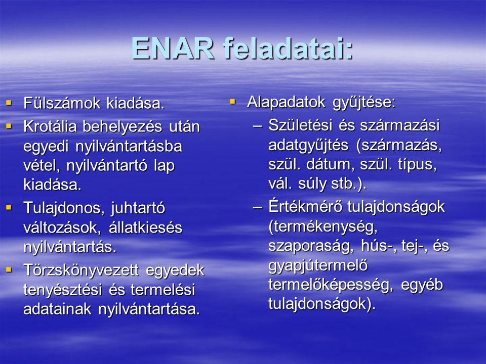 ENAR feladatai:  Fülszámok kiadása.  Krotália behelyezés után egyedi nyilvántartásba vétel, nyilvántartó lap kiadása.  Tulajdonos, juhtartó változá