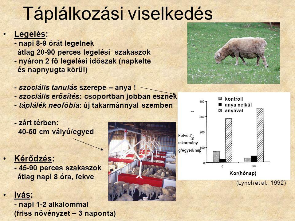 Területhasználat Lakóterület (home range): - mérete évszakonként és fajtánként változik (néhány 10 – több ezer hektár) - speciális (magasan fekvő) éjszakázó helyek - anyák és kosok külön területeket használnak a szaporodási időszakon kívül (vadjuhok évente 5x is válthatnak lakóterületet) Legelőhasználat (fajtajelleg!): - hegyi fajták – nagyobb távolságot tartanak (skót feketefejű) (foltszerűen elhelyezkedő növényzet) - alföldiek – közelebb legelnek (merinó) (egyenletesen elhelyezkedő növényzet) Legelés közbeni orientáció: - 110 °-os szögben látja a többieket (Crofton, 1958)
