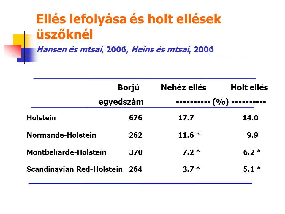 Ellés lefolyása és holt ellések üszőknél Holstein67617.714.0 Normande-Holstein26211.6 *9.9 Montbeliarde-Holstein370 7.2 *6.2 * Scandinavian Red-Holste