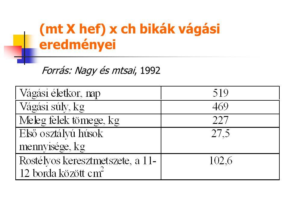 (mt X hef) x ch bikák vágási eredményei Forrás: Nagy és mtsai, 1992