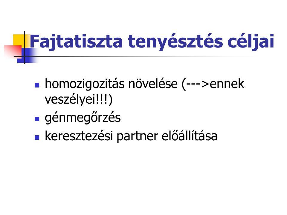 Fajtatiszta tenyésztés céljai homozigozitás növelése (--->ennek veszélyei!!!) génmegőrzés keresztezési partner előállítása