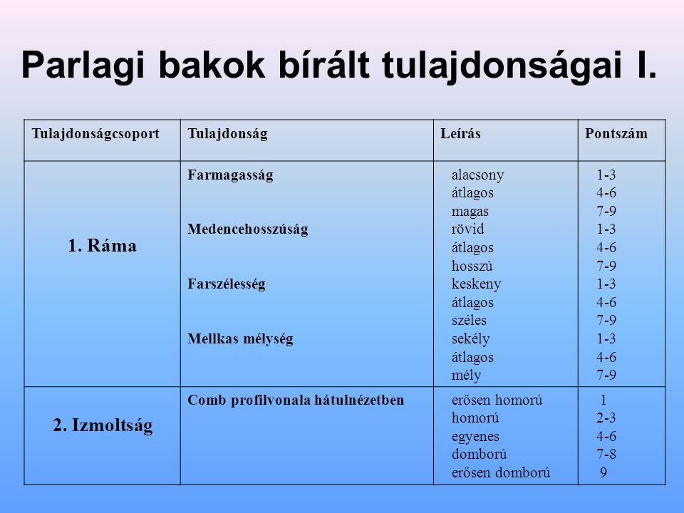 Parlagi bakok bírált tulajdonságai II.TulajdonságcsoportTulajdonságLeírásPontszá m 3.