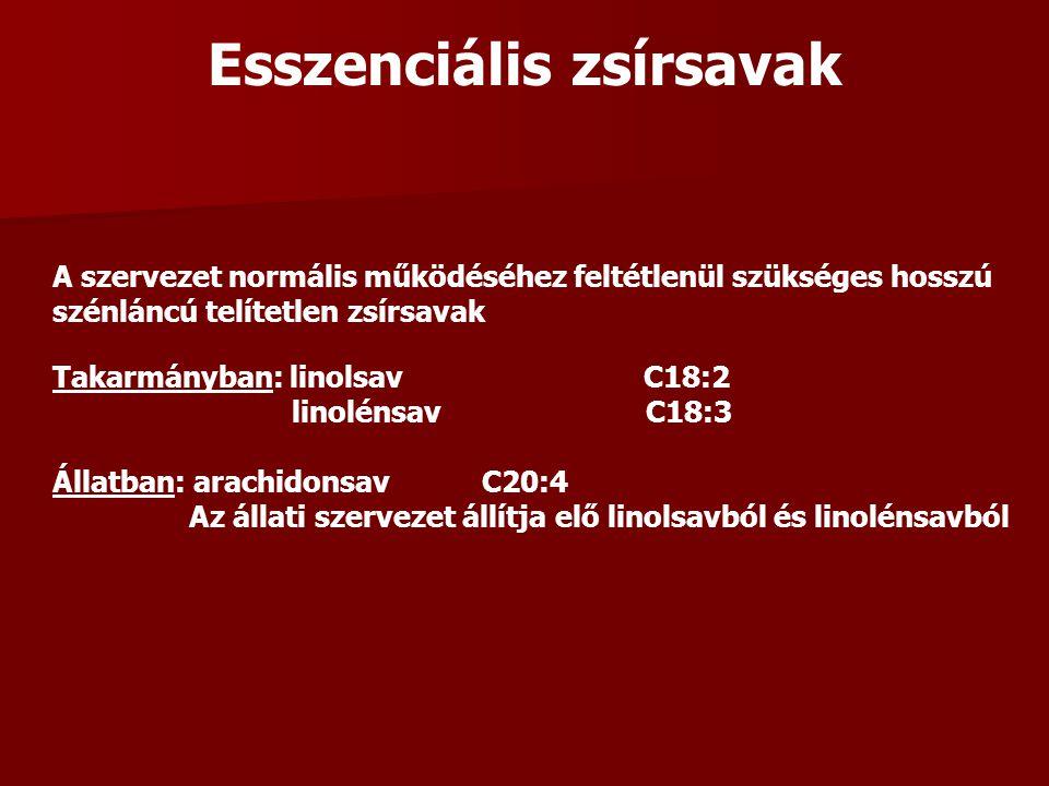 Esszenciális zsírsavak A szervezet normális működéséhez feltétlenül szükséges hosszú szénláncú telítetlen zsírsavak Takarmányban: linolsav C18:2 linolénsav C18:3 Állatban: arachidonsav C20:4 Az állati szervezet állítja elő linolsavból és linolénsavból