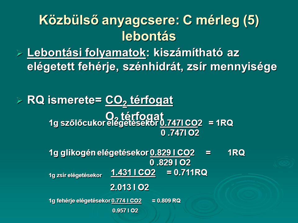 Közbülső anyagcsere: C mérleg (5) lebontás  Lebontási folyamatok: kiszámítható az elégetett fehérje, szénhidrát, zsír mennyisége  RQ ismerete= CO 2 térfogat O 2 térfogat 1g szőlőcukor elégetésekor 0.747l CO2 = 1RQ 0.747l O2 1g glikogén elégetésekor 0.829 l CO2 = 1RQ 0.829 l O2 1g zsír elégetésekor 1.431 l CO2 = 0.711RQ 2.013 l O2 2.013 l O2 1g fehérje elégetésekor 0.774 l CO2 = 0.809 RQ 0.957 l O2 0.957 l O2
