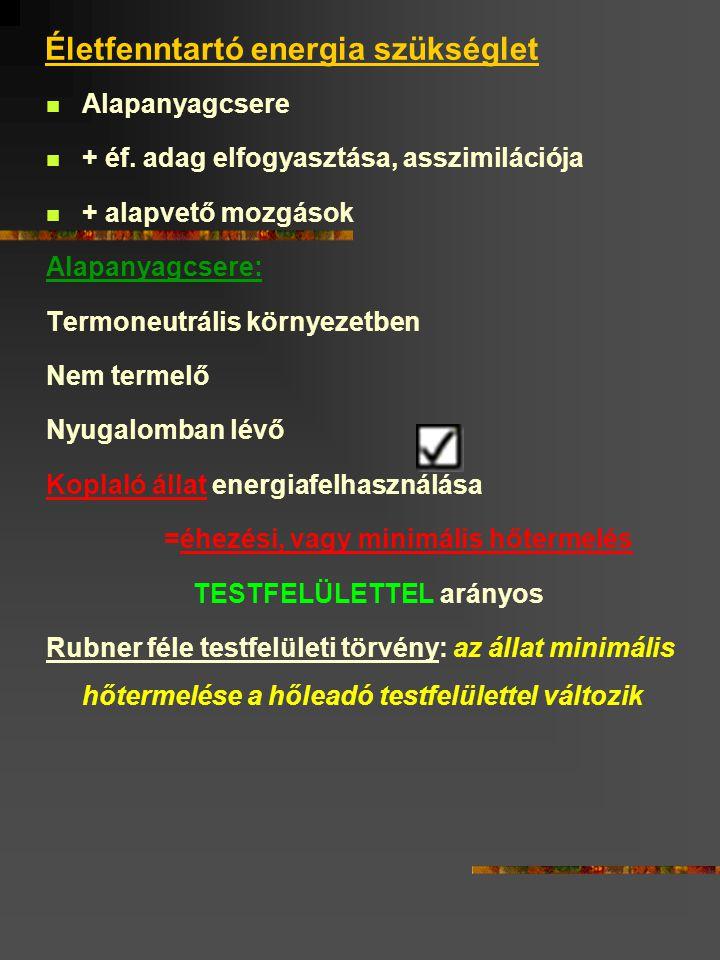 Az életfenntartás táplálóanyag szükséglete Nem termelő Nem koplaló Nyugalomban lévő Termoneutrális környezetben élő állat szükséglete Táplálóanyag szükséges: Testhőmérséklet fenntartása Alapvető testmozgások Belső munka: légzés Keringés Kiválasztás Izomtónus- Éf.-t takarmányadag felvétele megemésztése felszívódása Sejtszinten: izotónia Izohidria Sejtkopás Aktív membrántranszport