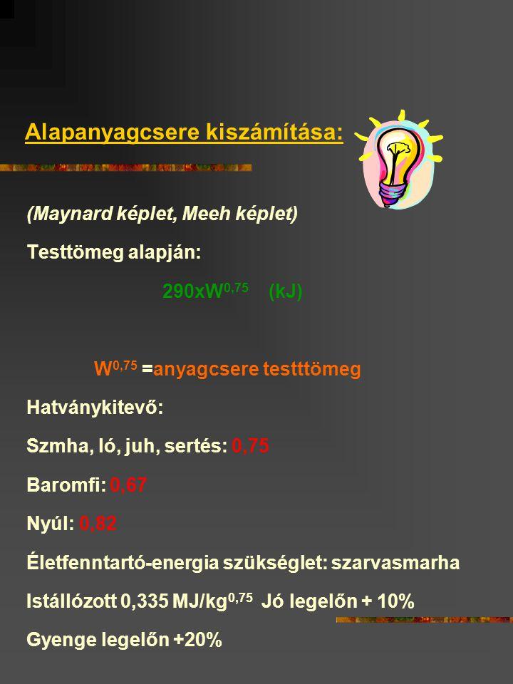 Alapanyagcsere kiszámítása: (Maynard képlet, Meeh képlet) Testtömeg alapján: 290xW 0,75 (kJ) W 0,75 =anyagcsere testttömeg Hatványkitevő: Szmha, ló, juh, sertés: 0,75 Baromfi: 0,67 Nyúl: 0,82 Életfenntartó-energia szükséglet: szarvasmarha Istállózott 0,335 MJ/kg 0,75 Jó legelőn + 10% Gyenge legelőn +20%
