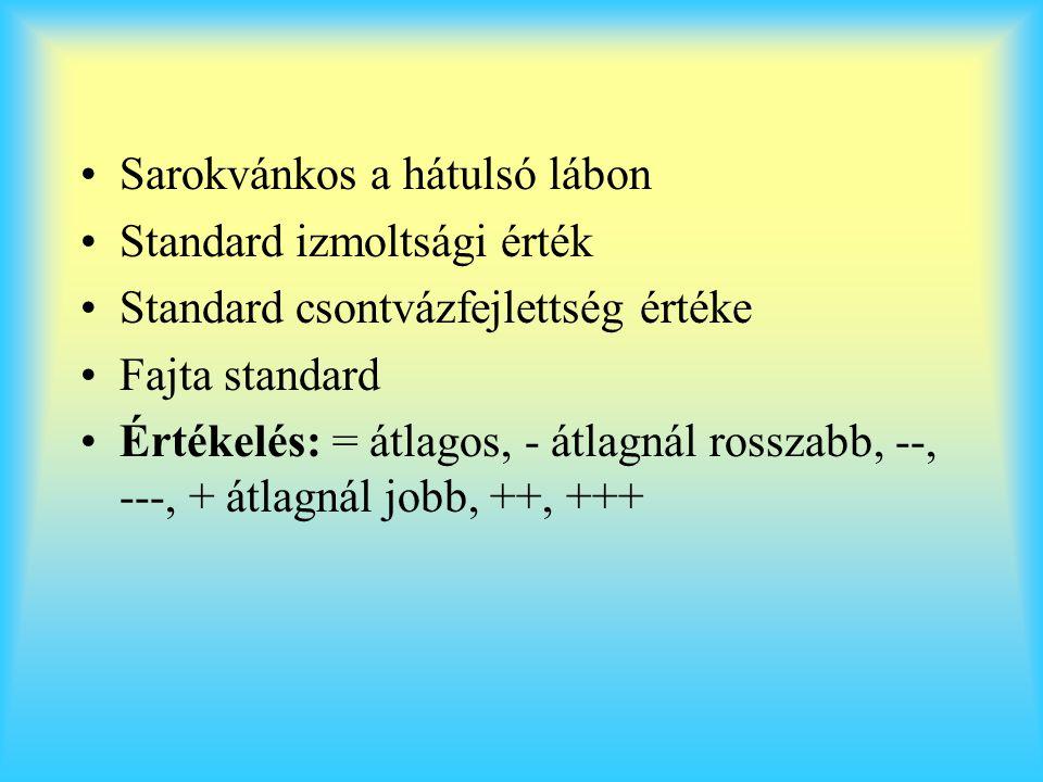 Sarokvánkos a hátulsó lábon Standard izmoltsági érték Standard csontvázfejlettség értéke Fajta standard Értékelés: = átlagos, - átlagnál rosszabb, --,