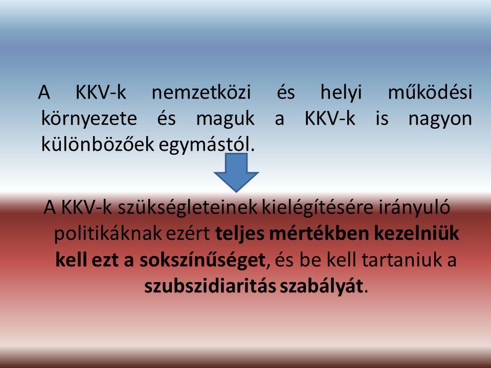 A KKV-k nemzetközi és helyi működési környezete és maguk a KKV-k is nagyon különbözőek egymástól. A KKV-k szükségleteinek kielégítésére irányuló polit